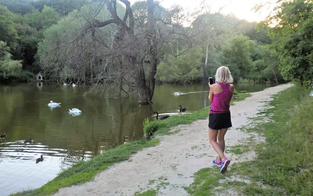 Бігаємо манівцями: Дослідне поле-Дендропарк – маршрут Анни Маслової